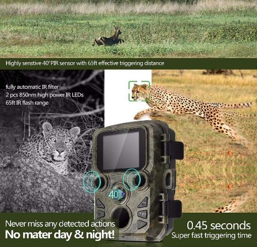 caméra de chasse mieux choisir